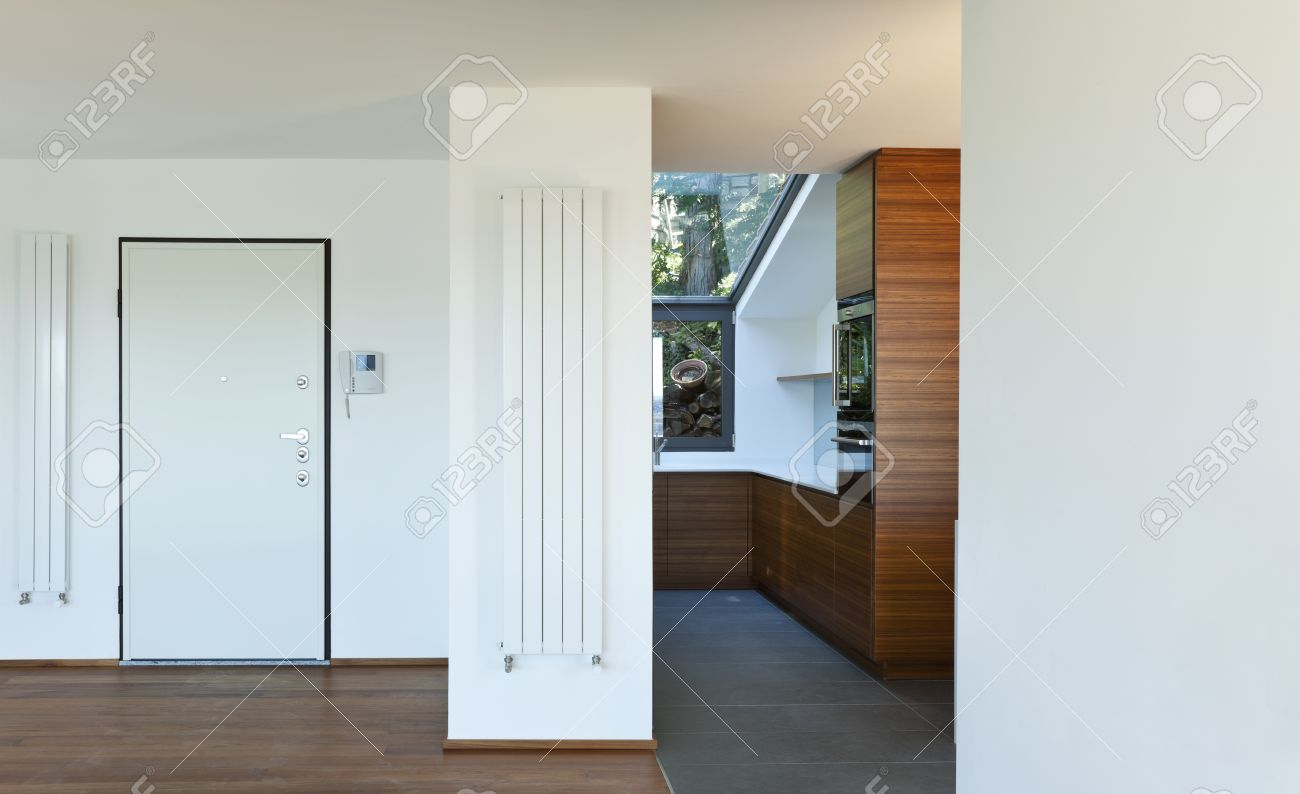 Modern apartment,entrance door and kitchen view