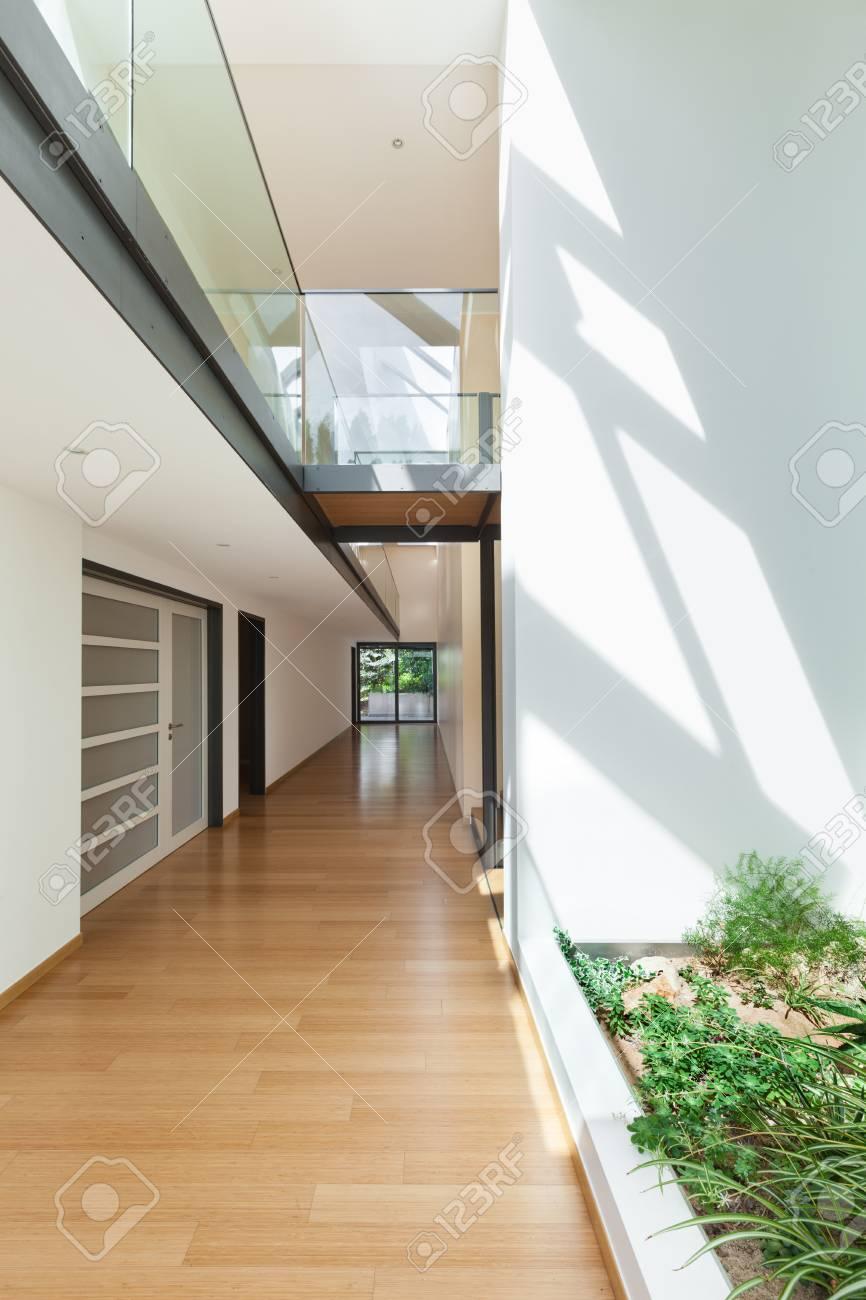 Entrée Moderne Maison tout entrée d'une maison moderne, long couloir, plancher de bois franc