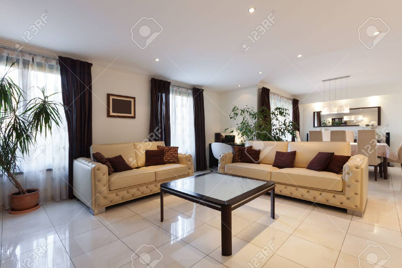 living room of a modern apartment, leather sofas - 51639246
