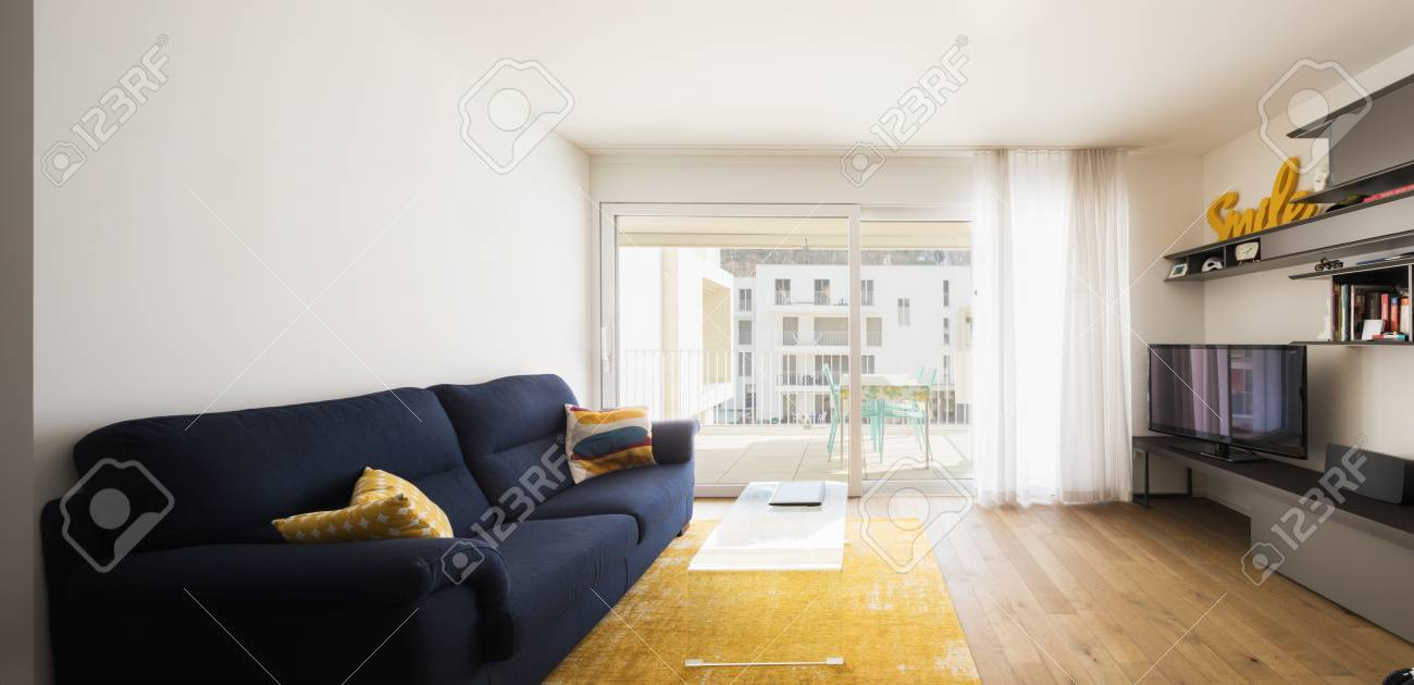 Living Room With Blue Sofa Yellow Carpet And Bright Window Stock Photo Picture And Royalty Free Image Image 97687546