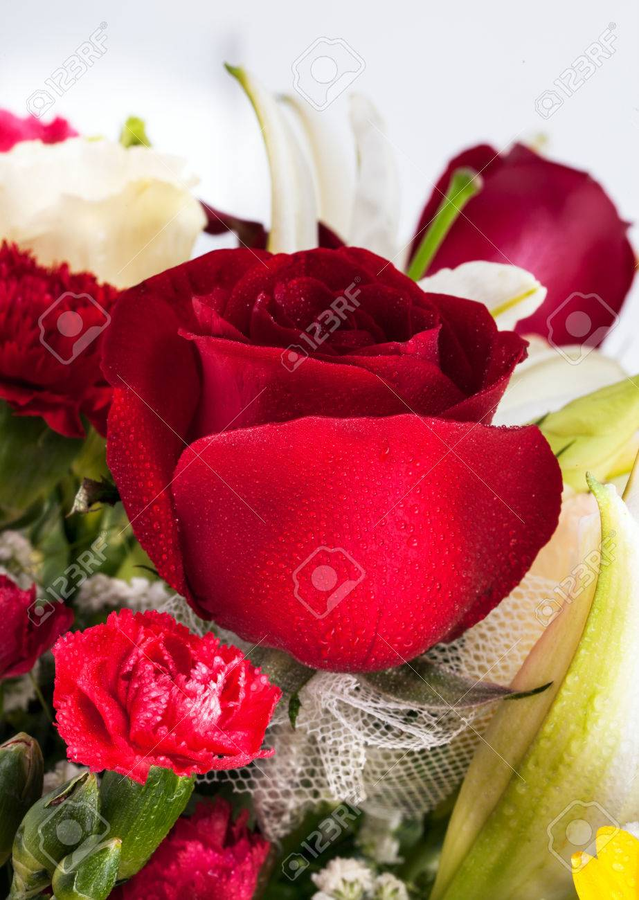 Beautiful red rose group of beautiful flowers with water drops stock beautiful red rose group of beautiful flowers with water drops stock photo 24388271 izmirmasajfo
