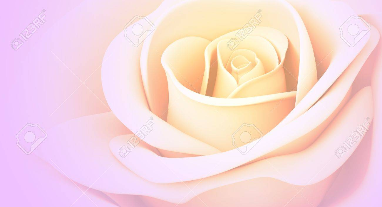 Color Combinations Yellow And Pink Rose Pastel Colors Isolated