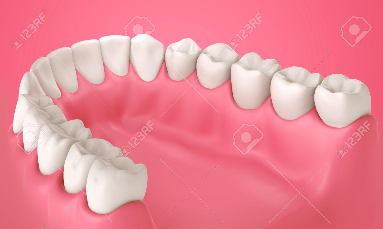 3 D の歯や口の中にビュー内の歯イラスト の写真素材画像素材 Image