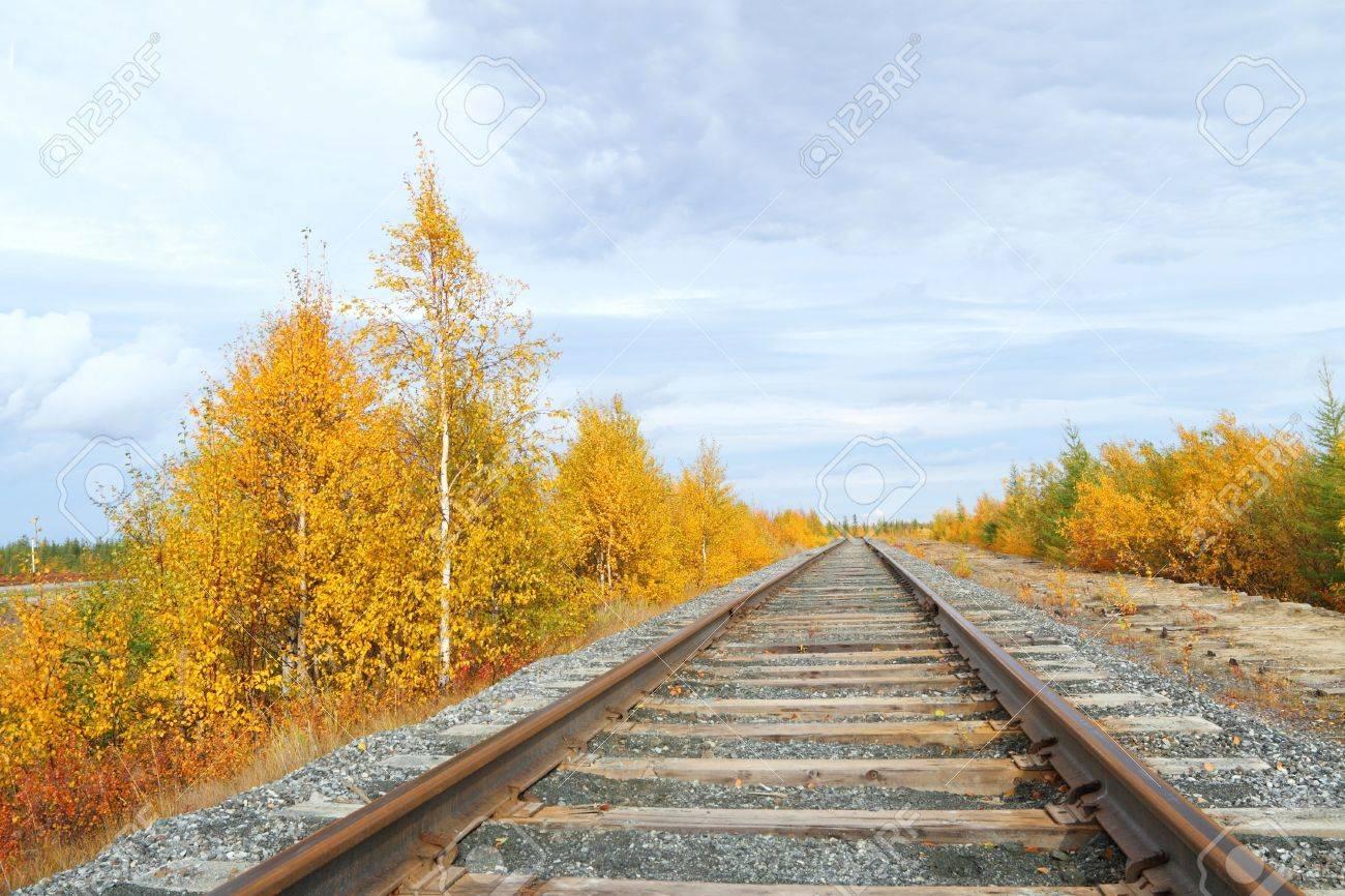Track in the autumn. Siberia, Russia Stock Photo - 16232816