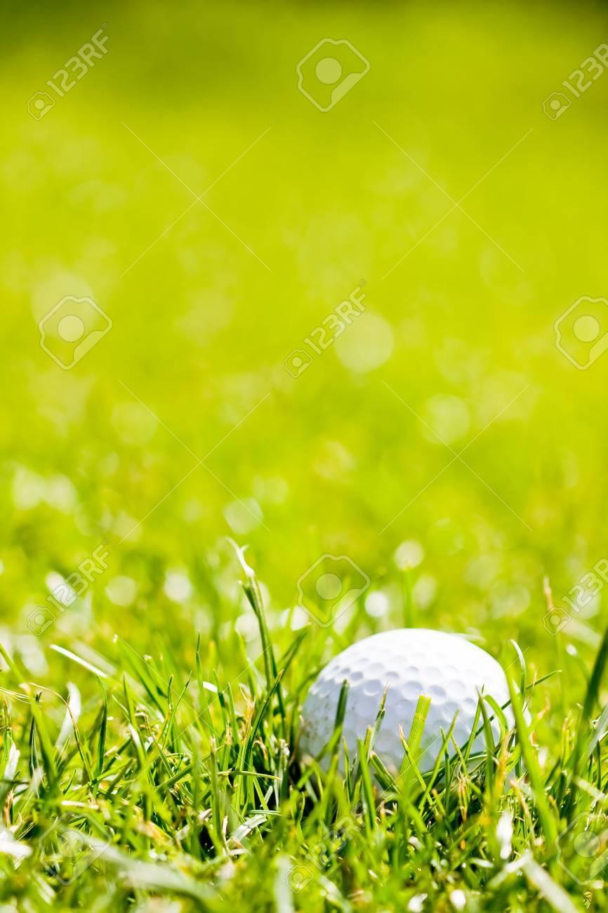 Golf ball on the green grass Stock Photo - 5230826