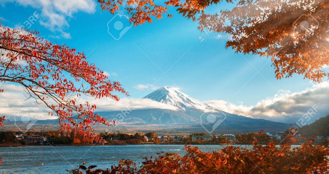 Colorful Autumn in Mount Fuji, Japan - Lake Kawaguchiko is one of the best places in Japan to enjoy Mount Fuji scenery of maple leaves changing color giving image of those leaves framing Mount Fuji. - 85159003