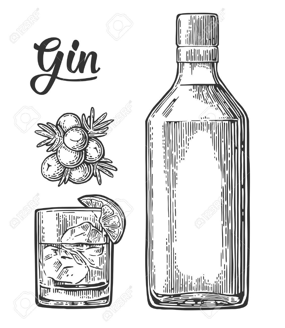 ガラスとジンとベリーとジュニパーの支店のボトルビンテージ ベクトル