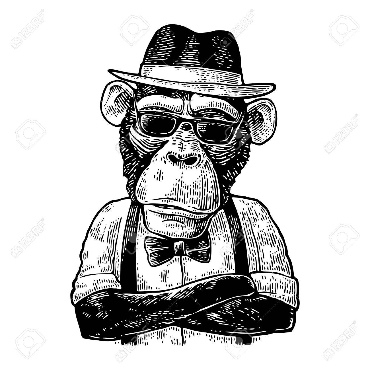 Monkey hipster with arms crossedin in hat, shirt, glasses and bow tie - 79165153