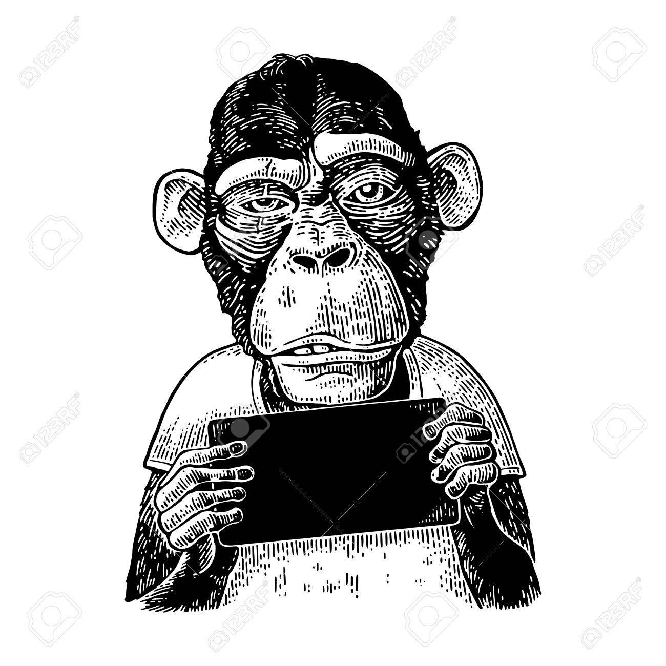 Monkeys holding table. Vintage black engraving illustration for poster. - 82422866