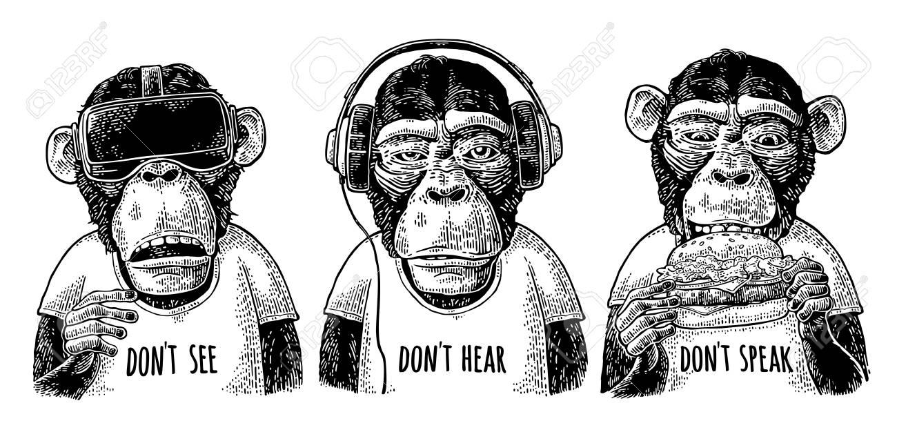 Three wise monkeys. Not see, not hear, not speak. Vintage engraving - 90922866