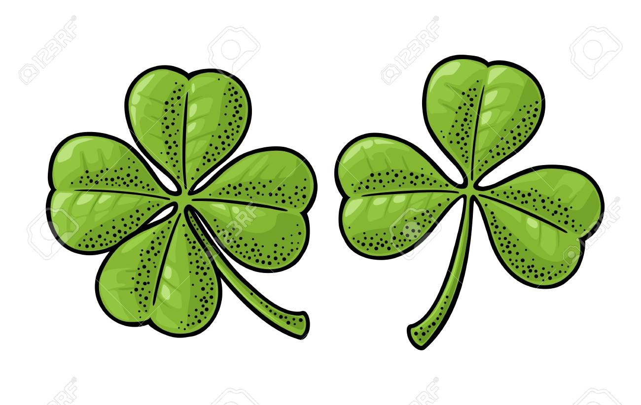 Good luck four and three leaf clover  Vintage color vector engraving