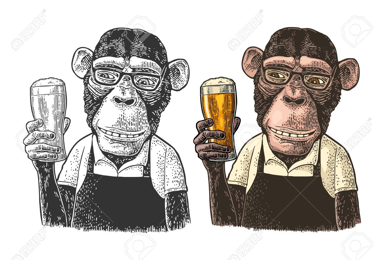 Monkey fast food worker dressed in apron holding glass of beer. Vintage color and black engraving illustration. Isolated on white background. Hand drawn design element for poster and t-shirt - 110202232