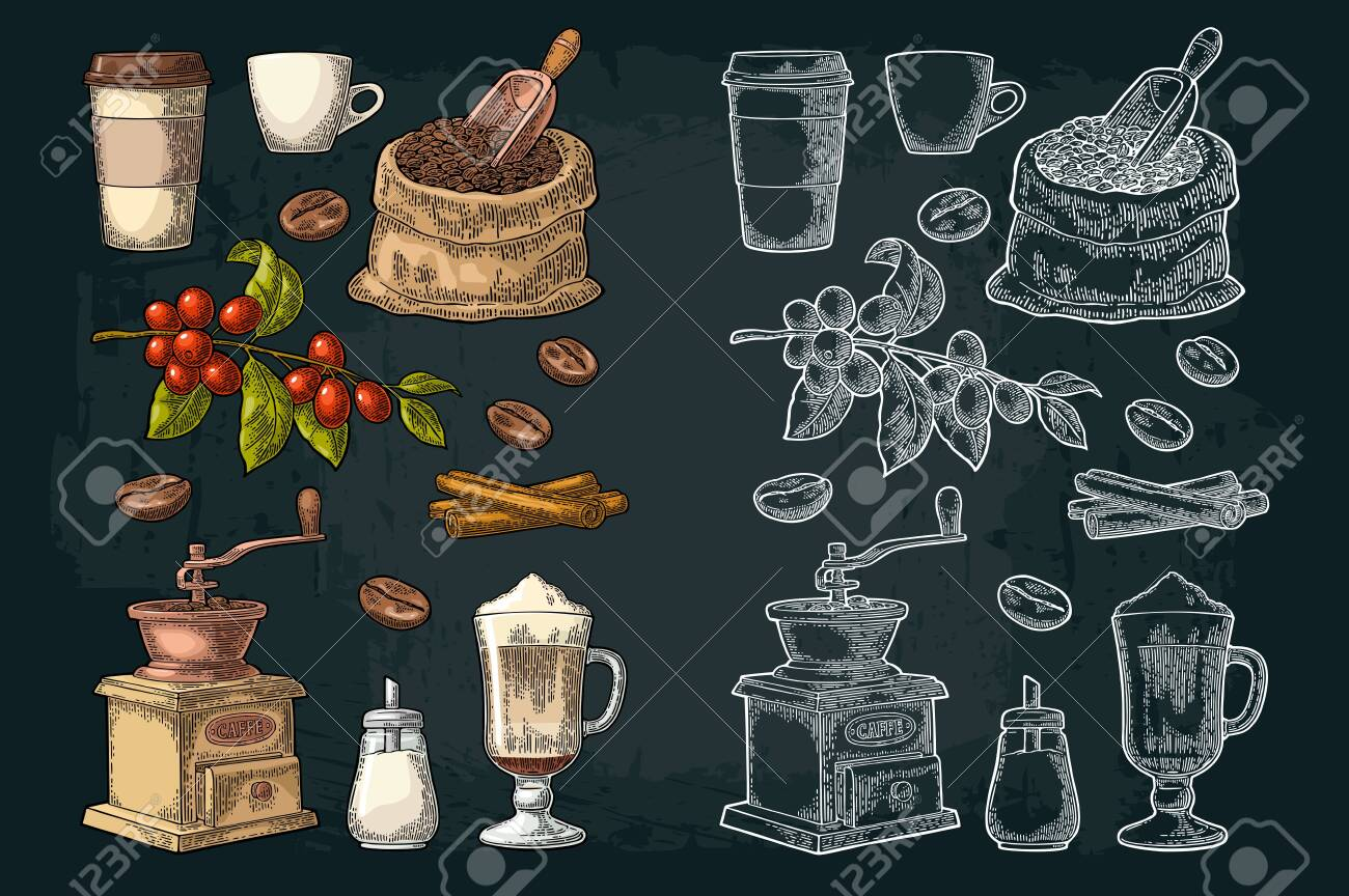 Glass latte, sack, beans, wooden scoop, hand-held coffee grinder, sugar, scoop, cinnamon stick, branch with leaf and berry. Vintage color vector engraving illustration isolated on dark background - 124066256