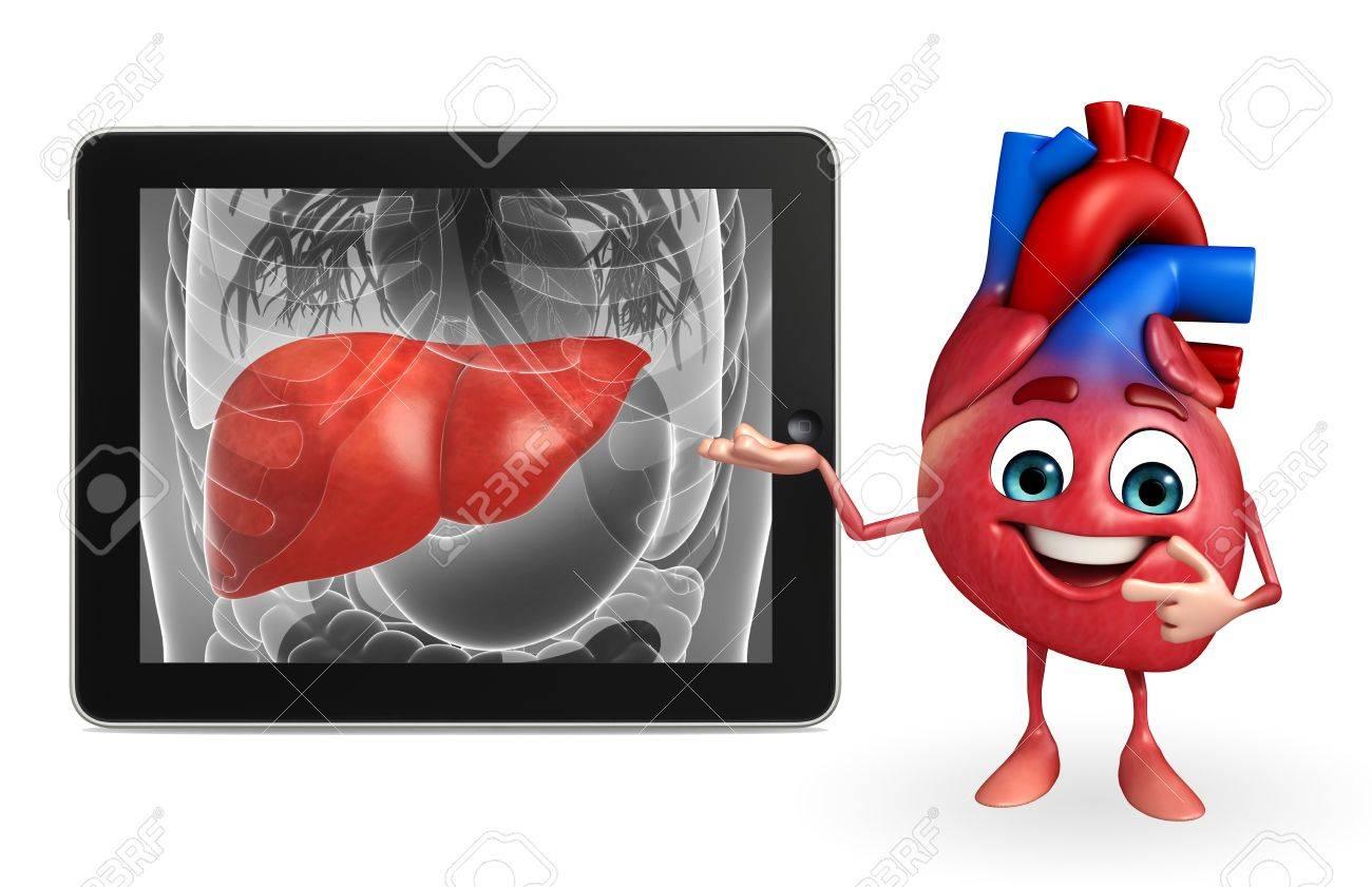 Personaje De Dibujos Animados Del Corazón Con La Anatomía Del Hígado ...