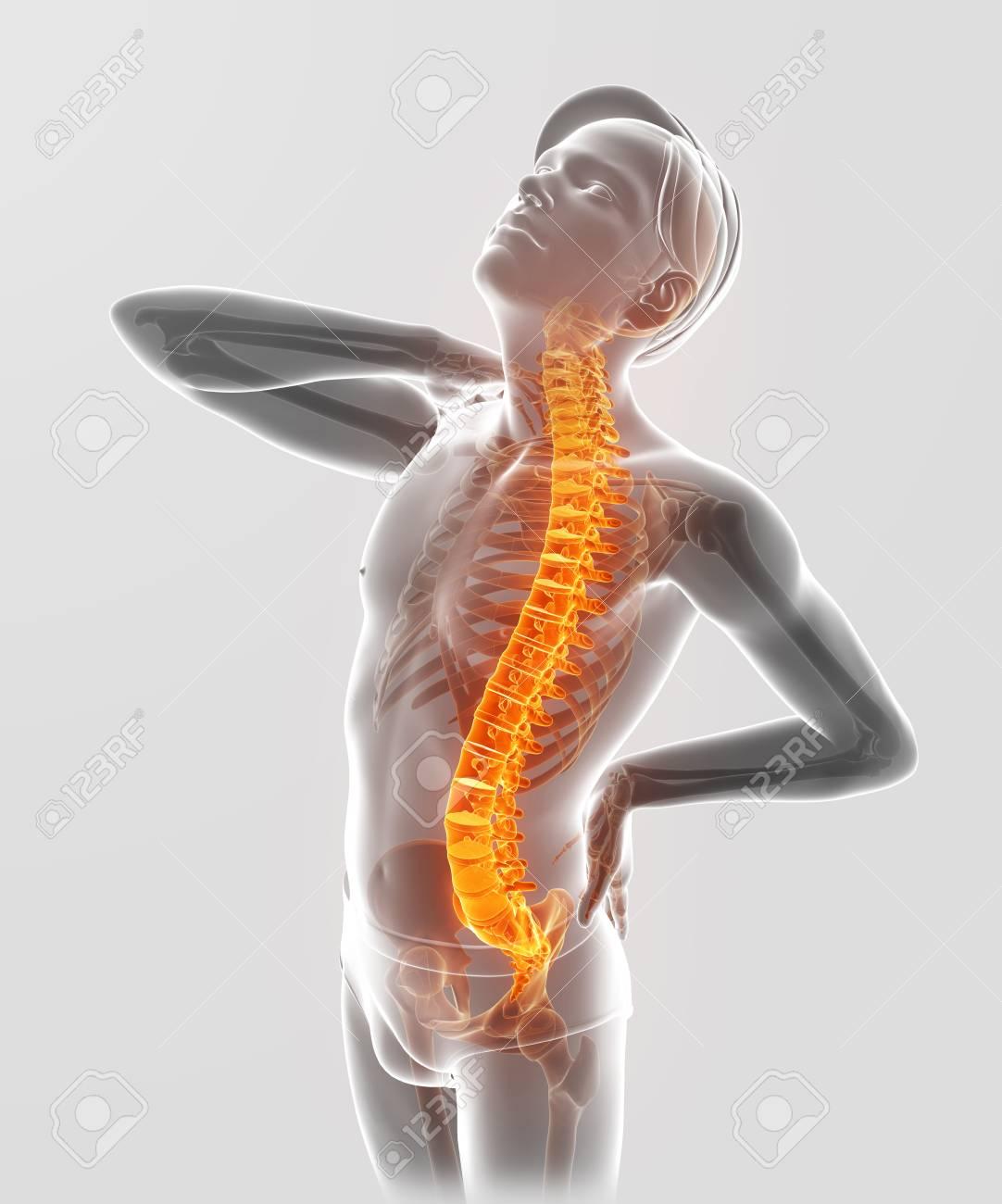 3D-Illustration Der Männlichen Die Rückenschmerzen Gefühl ...