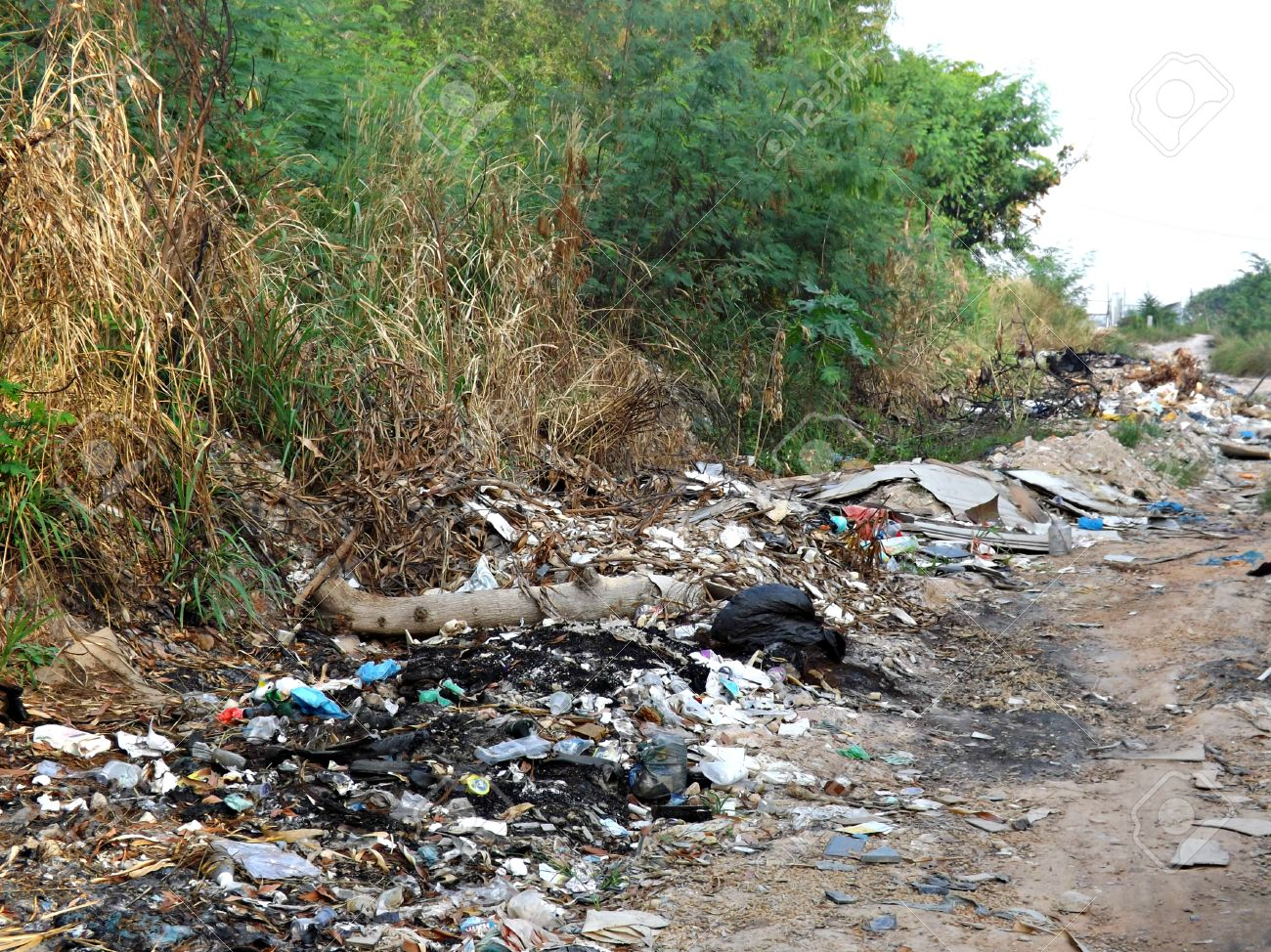 essays on land pollution Essay on land pollution land is getting heavily polluted now-a-days by toxic materials and dangerous micro-organisms which enter the air, water and the food chain.