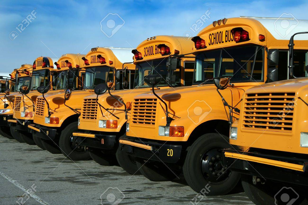 A long row of parked public school buses. Stock Photo - 9114866