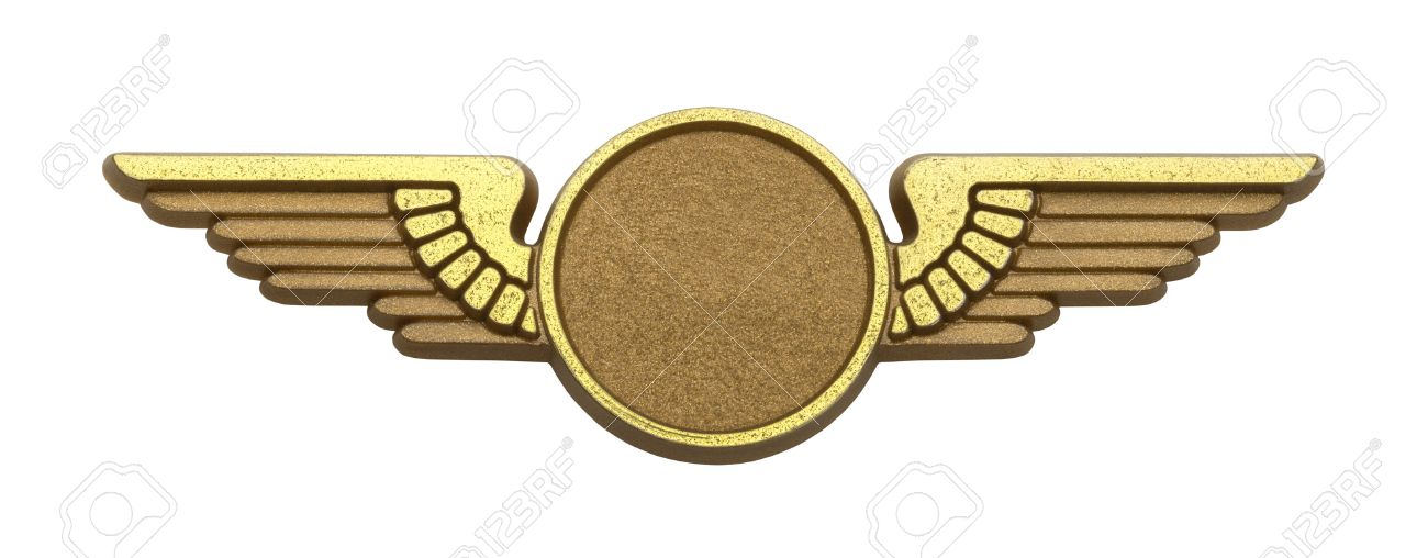 gold plastic pilot wings with copy space isolated on white