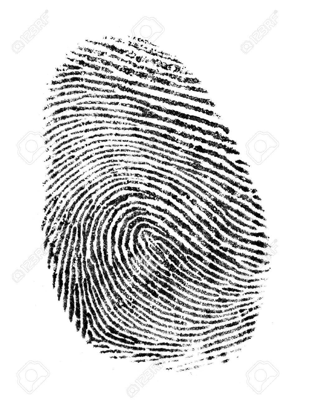 Black Ink Fingerprint Isolated on a White Background. - 51202600