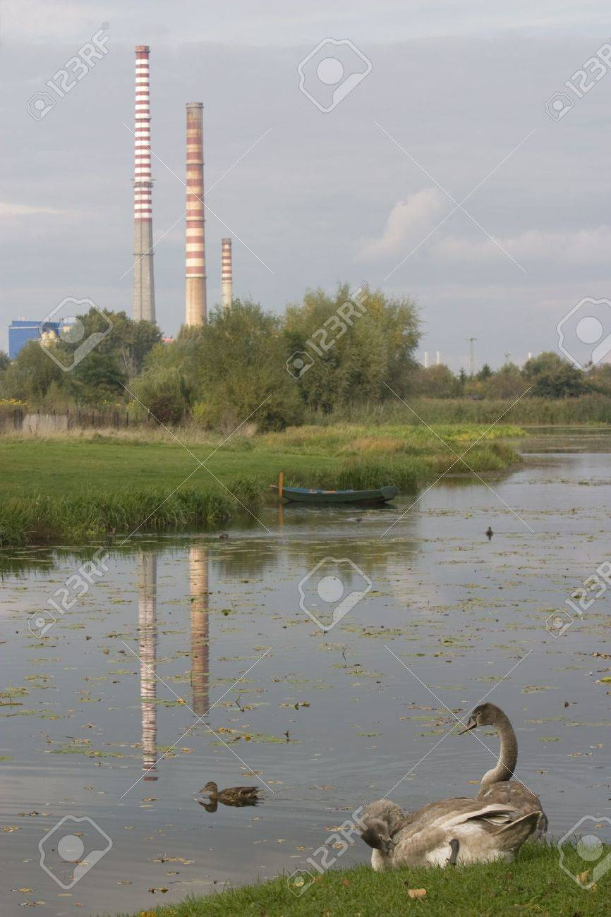 Coal burning power plant and a park pond with ducks and young swans, hazy and cloudy sky, water reflection of three tall stacks, Warsaw, Poland Stock Photo - 2539470