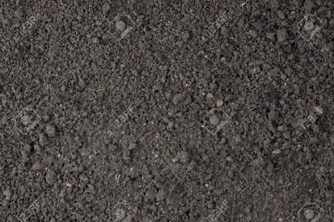cultivated garden moist top soil background with clay and sand dominant components Stock Photo - 4353727