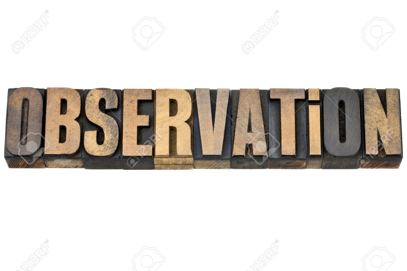 observation - isolated word in vintage letterpress wood type Stock Photo - 14780612