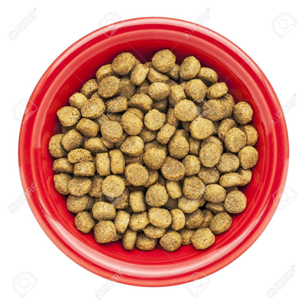 red bowl of dry dog food isolated on white Stock Photo - 17331762