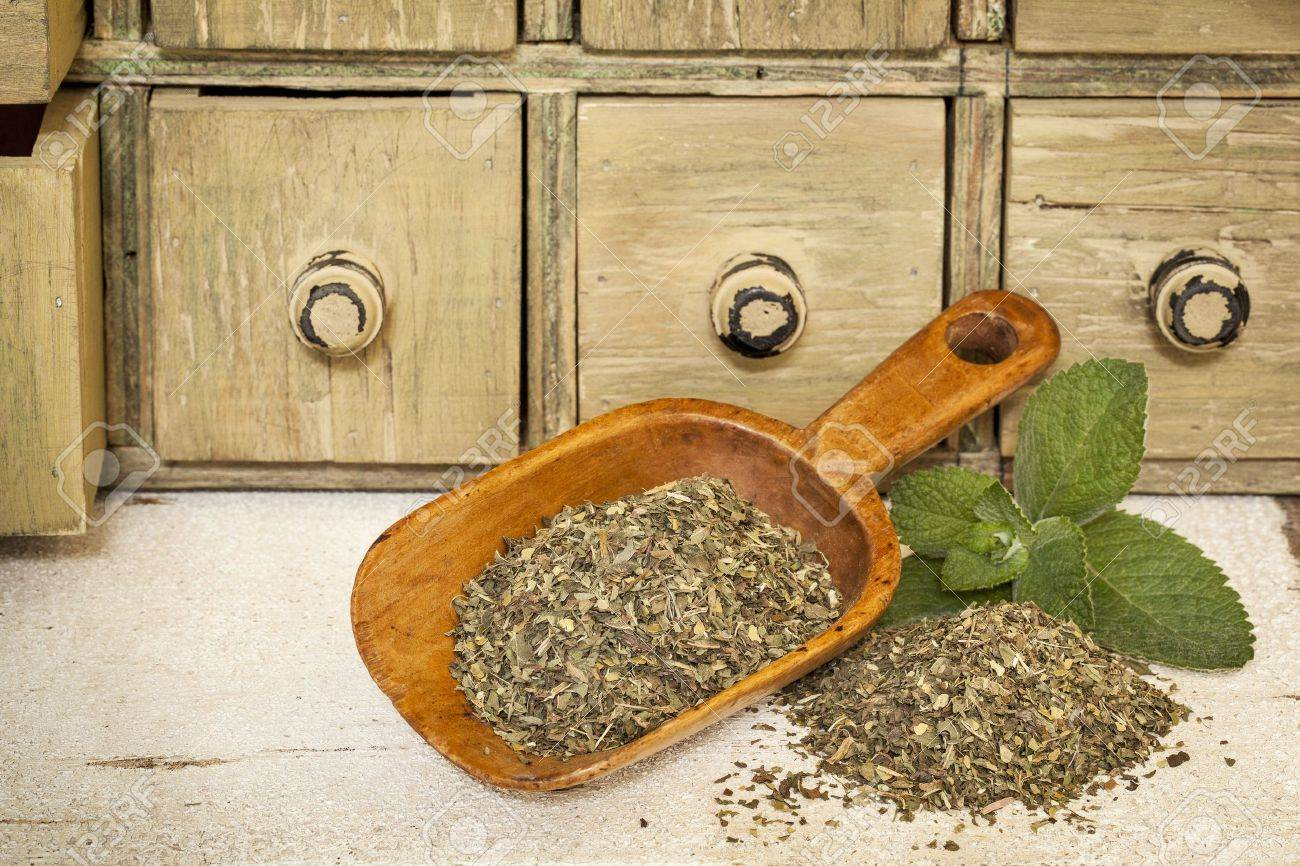 peppermint herbal tea with fresh leaves - a pile and rustic wooden scoop with a primitive apothecary drawer cabinet in background Stock Photo - 20440014