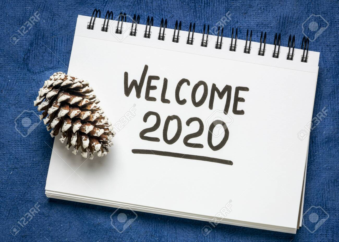 welcome 2020 handwriting in sketchbook with a frosty pine cone, New Year concept - 135817390