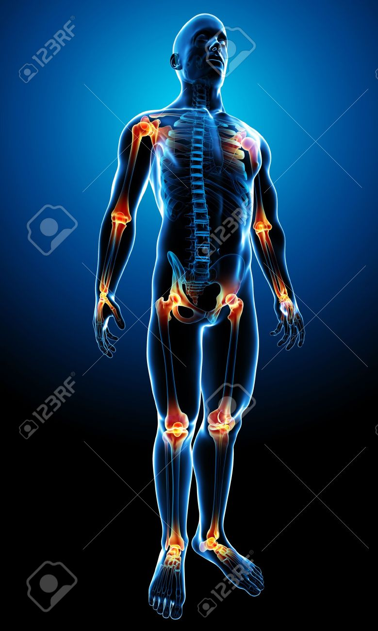 3d rendered illustration of a transparency male body with highlighted joints Stock Illustration - 13757466
