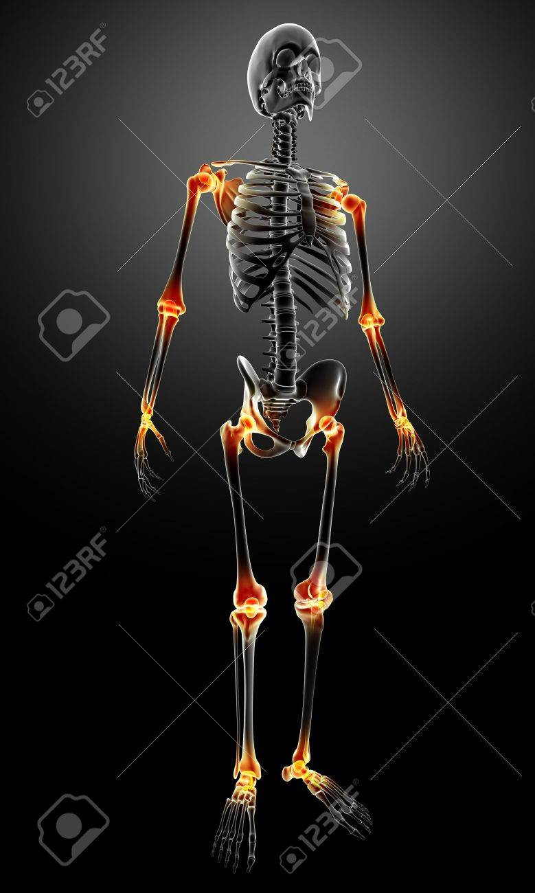 3d rendered medical x-ray illustration of X-ray with joint pain anatomy Stock Photo - 13757476