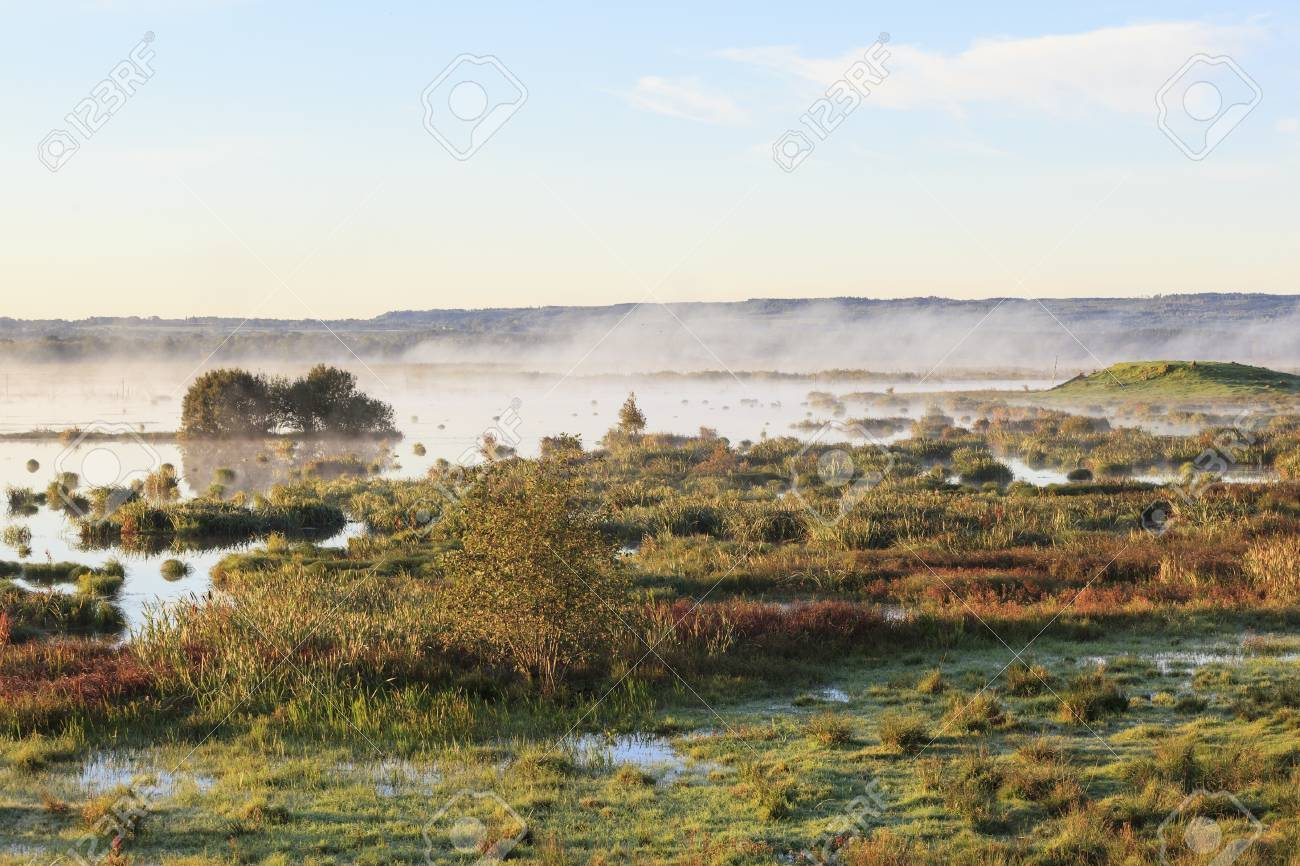 Autumn fog over the lake in the morning light Stock Photo - 14267400