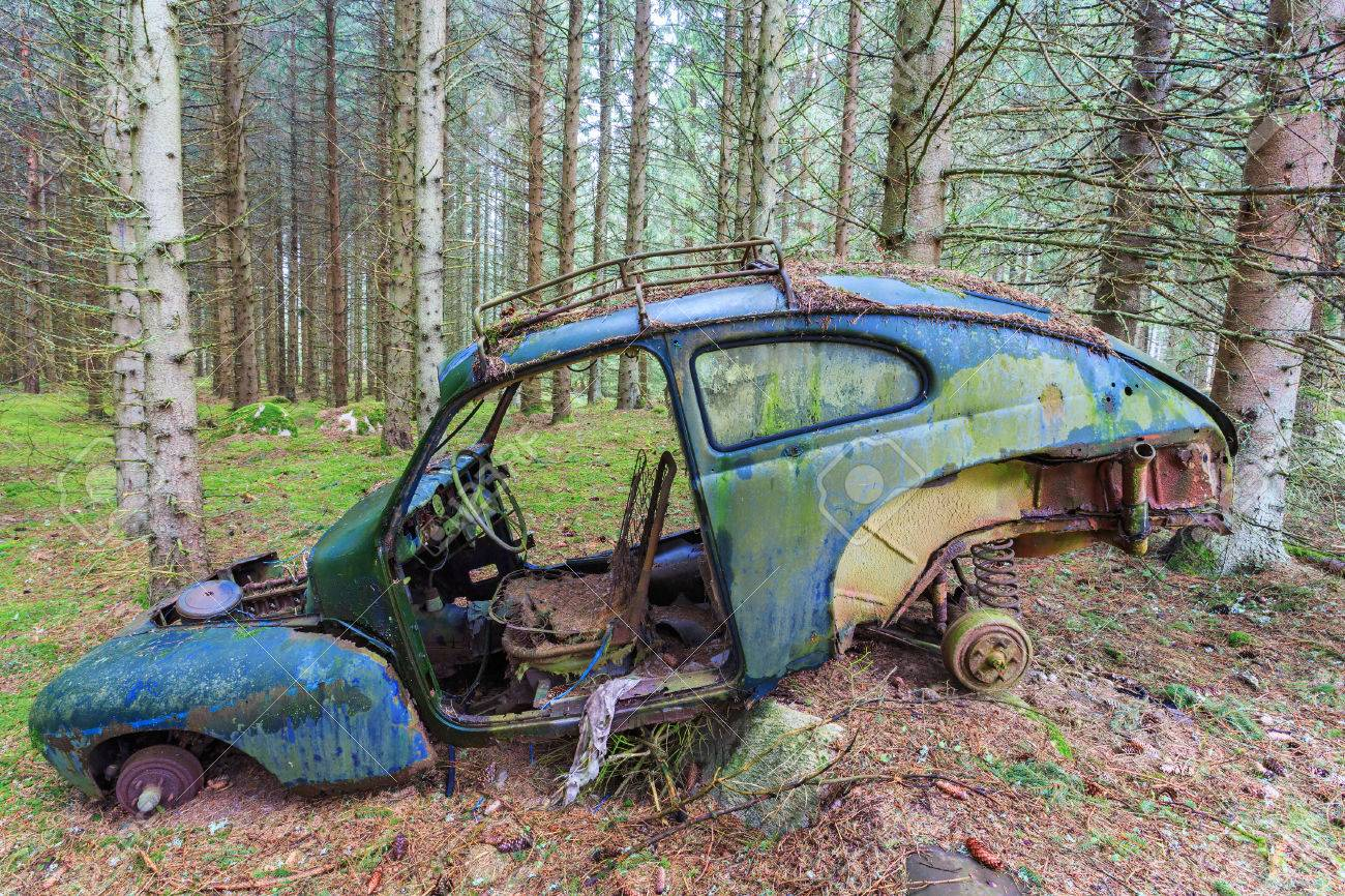 Old Car Wreck Standing In Woods Stock Photo Picture And Royalty
