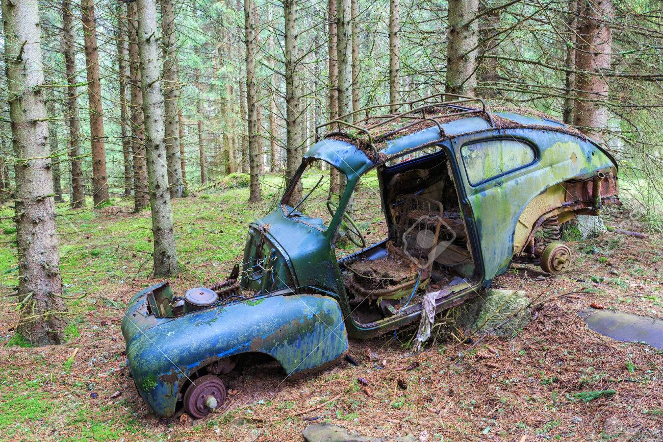 Old Car Wreck In Woods Stock Photo Picture And Royalty Free Image