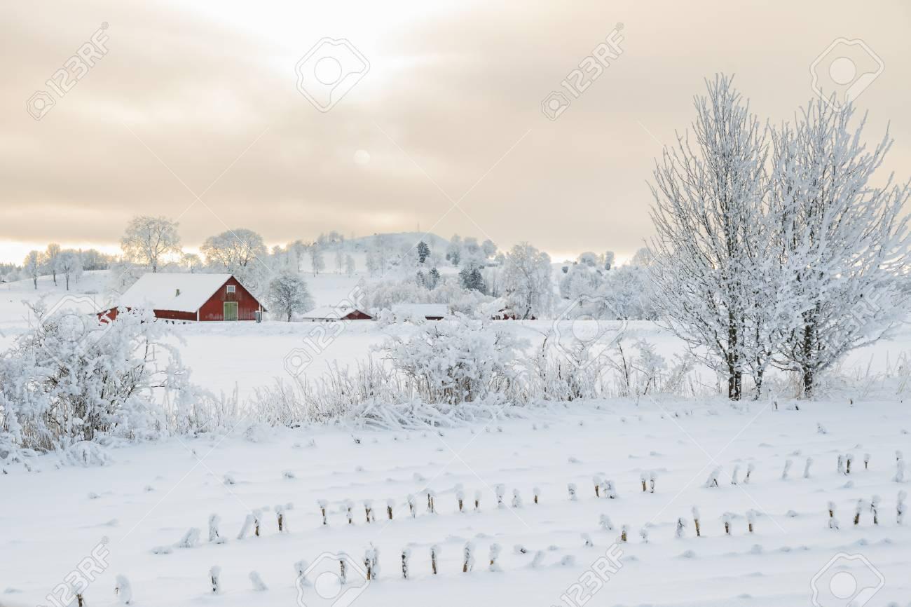 Rural winter landscape with a farm - 91229655
