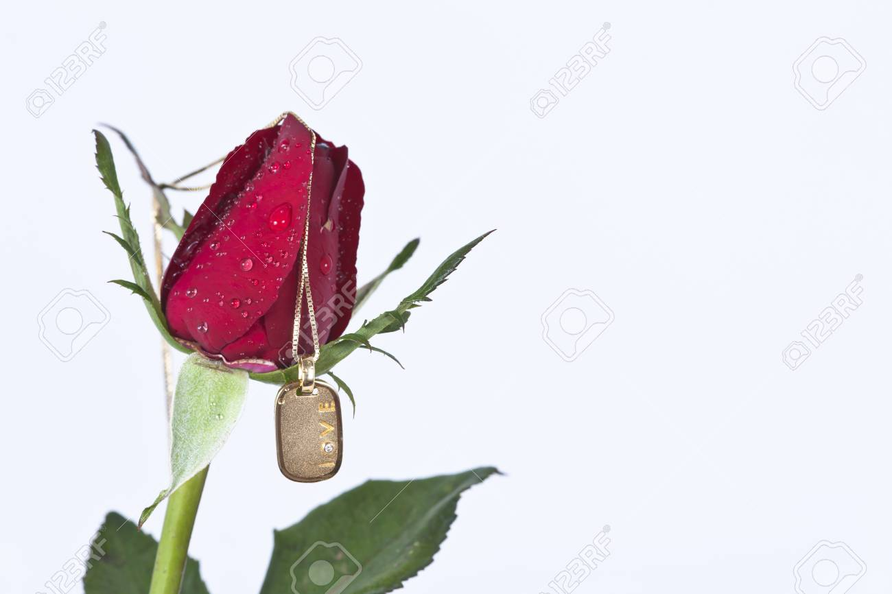 Gold pendant with diamond and red rose on white background Stock Photo - 11944426