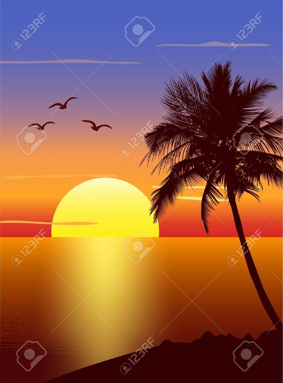 Sunset with palmtree silhouette Stock Vector - 12897696