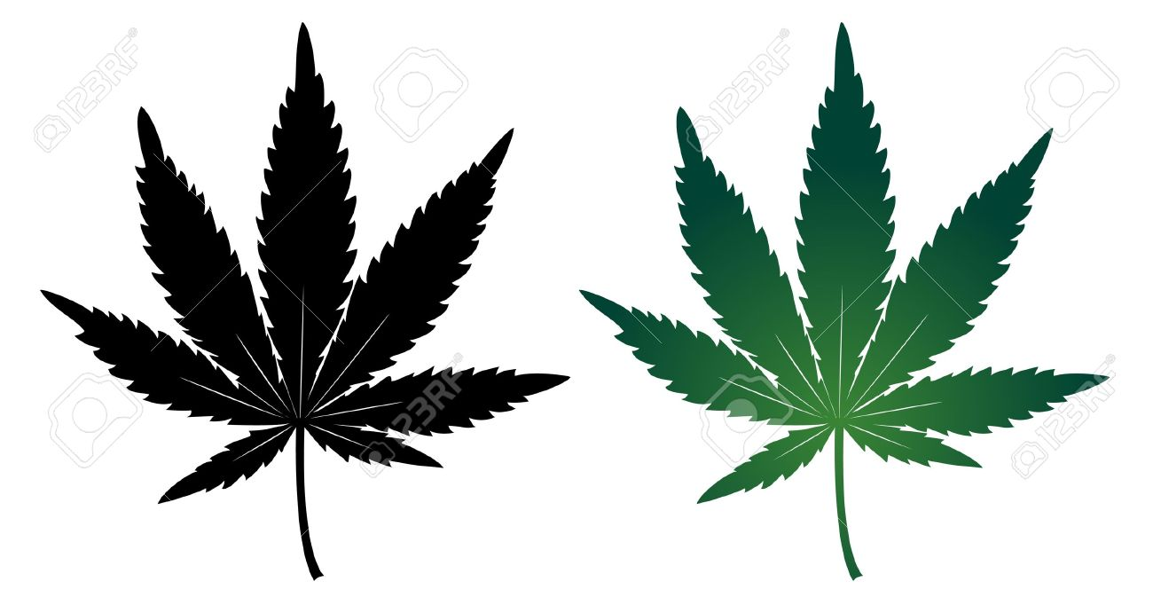 Cannabis leaf Stock Vector - 12897675
