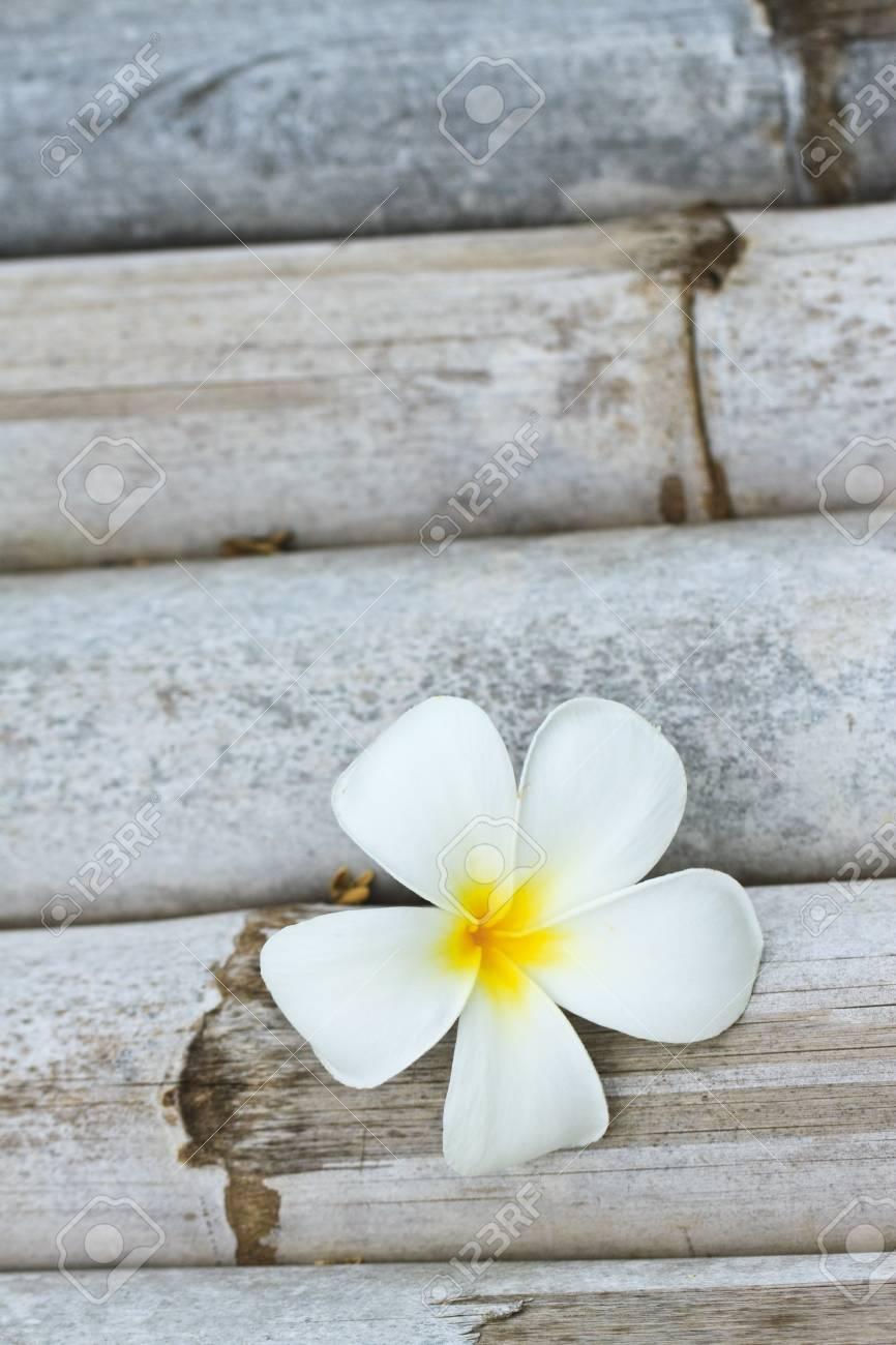 Plumeria alba flowers on bamboo table Stock Photo - 7902711