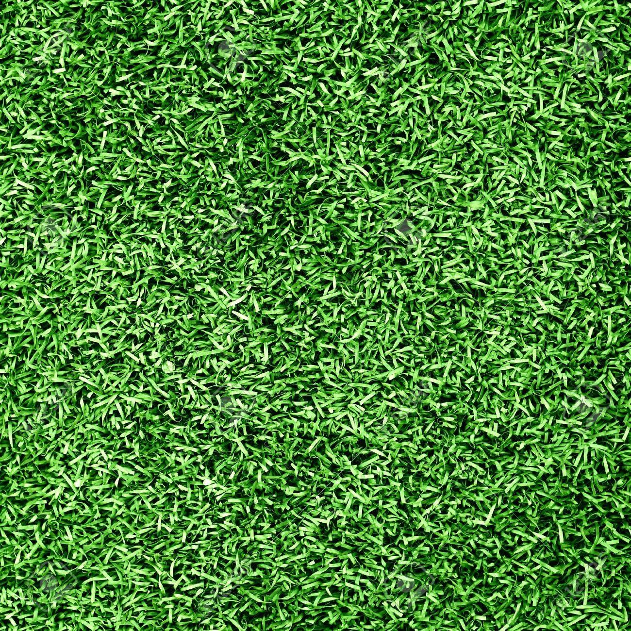 Grass background Stock Photo - 10427161