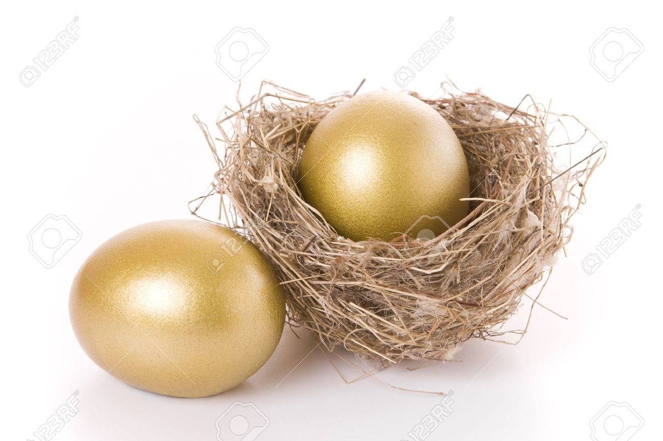 Saving concept - Two golden eggs and a nest isolated on white Stock Photo - 8414984