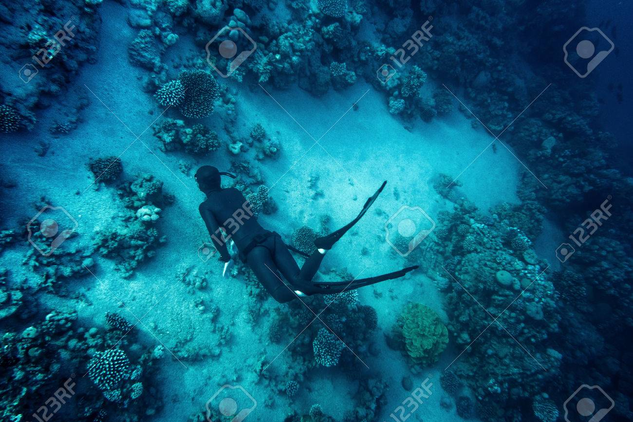 Freediver in wetsuit neoprene swim in the sea - 59981560