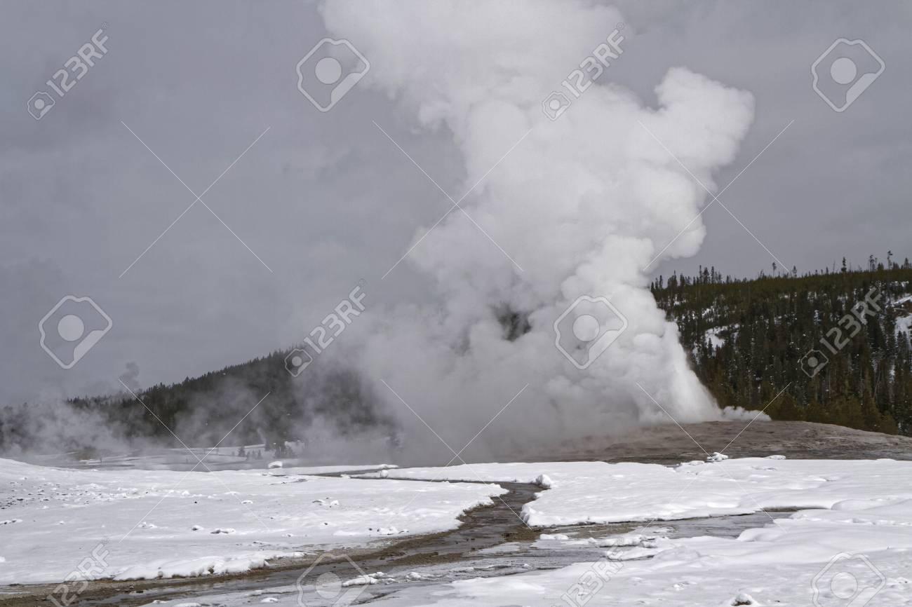 Old Faithful Geyser In Winter Yellowstone National Park