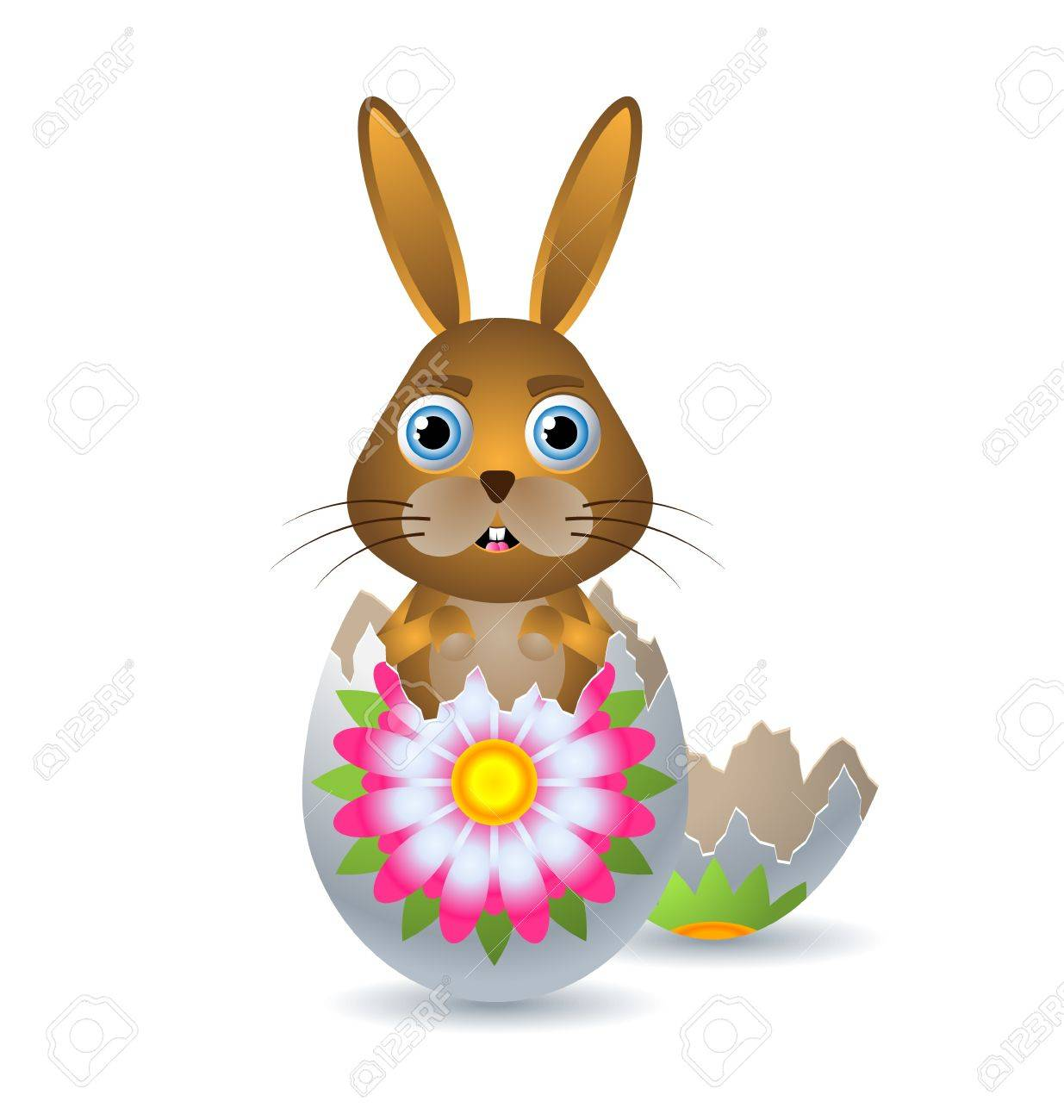 Easter bunny in a egg shell isolated on white background Stock Vector - 11294475