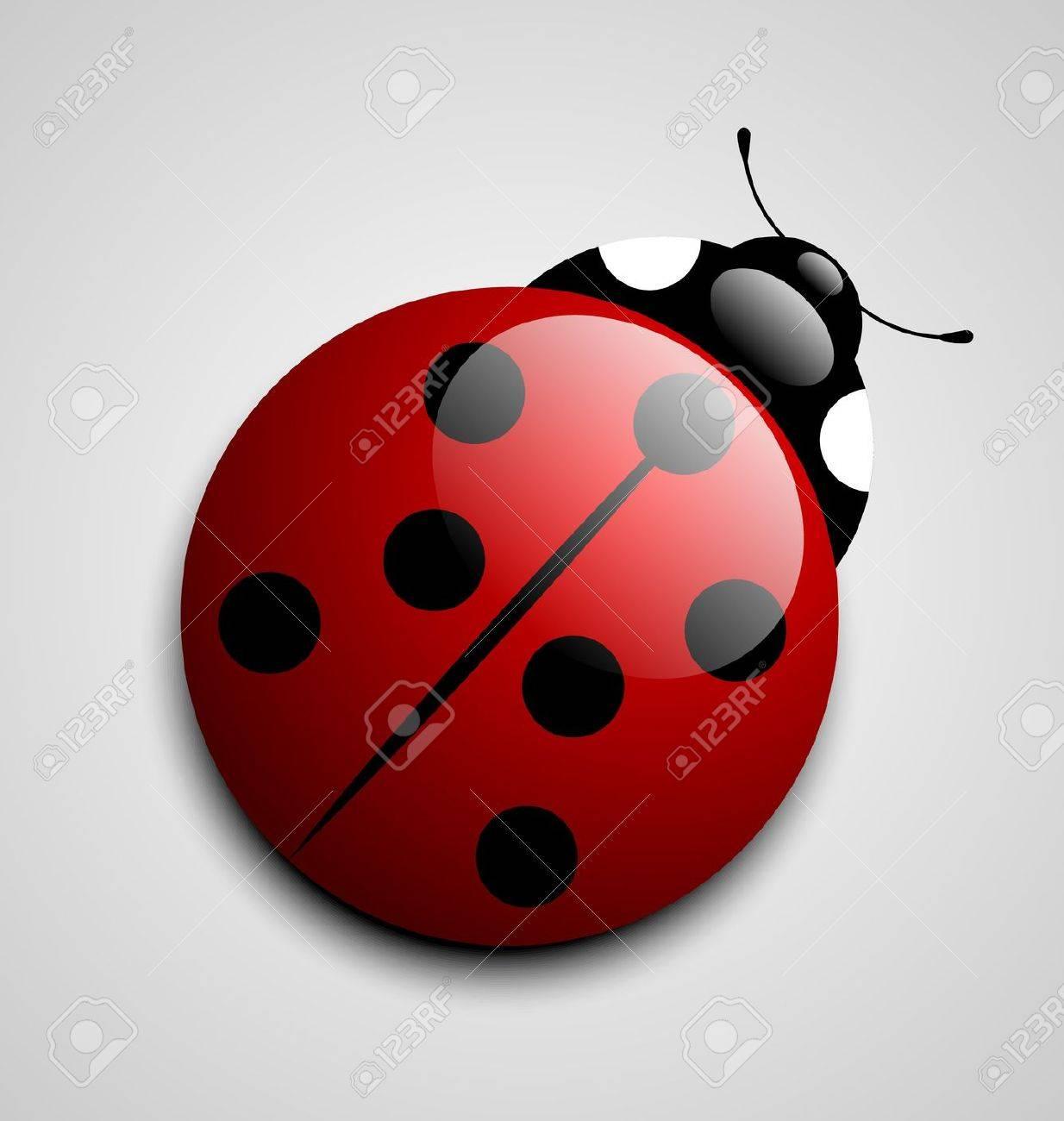 Glossy ladybug icon isolated on grey background - 14538649