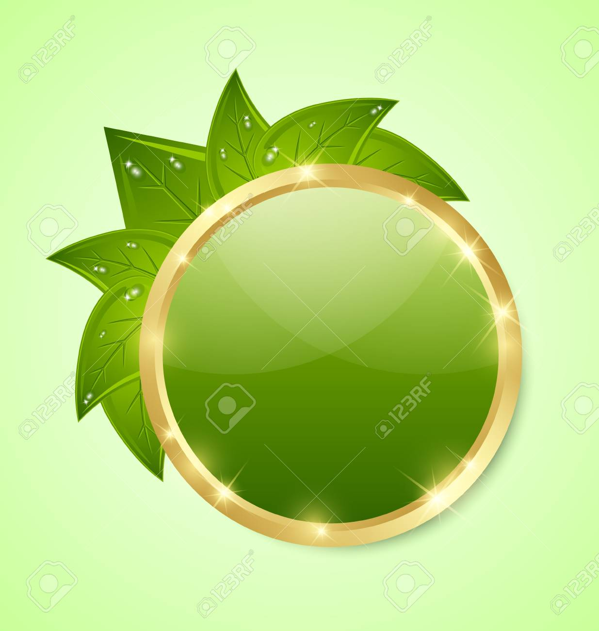Golden and green glossy plaque with leaves isolated on background Stock Vector - 15998662