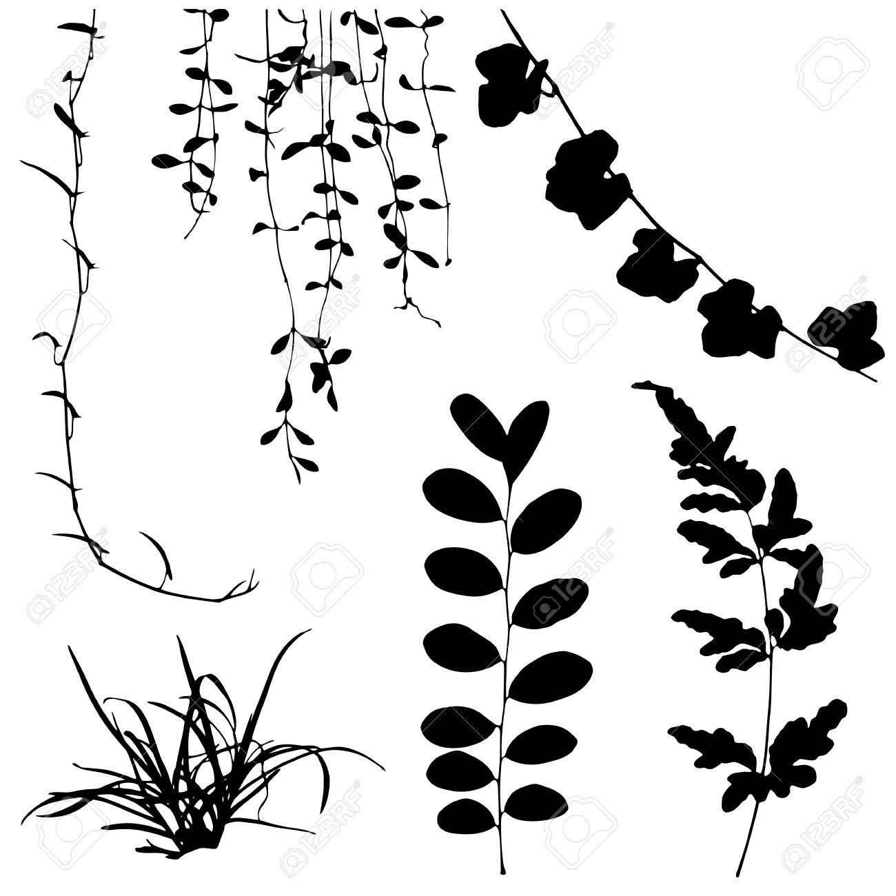 set black silhouettes of leaf and vine plant vector illustration royalty  free cliparts, vectors, and stock illustration. image 29651190.  123rf