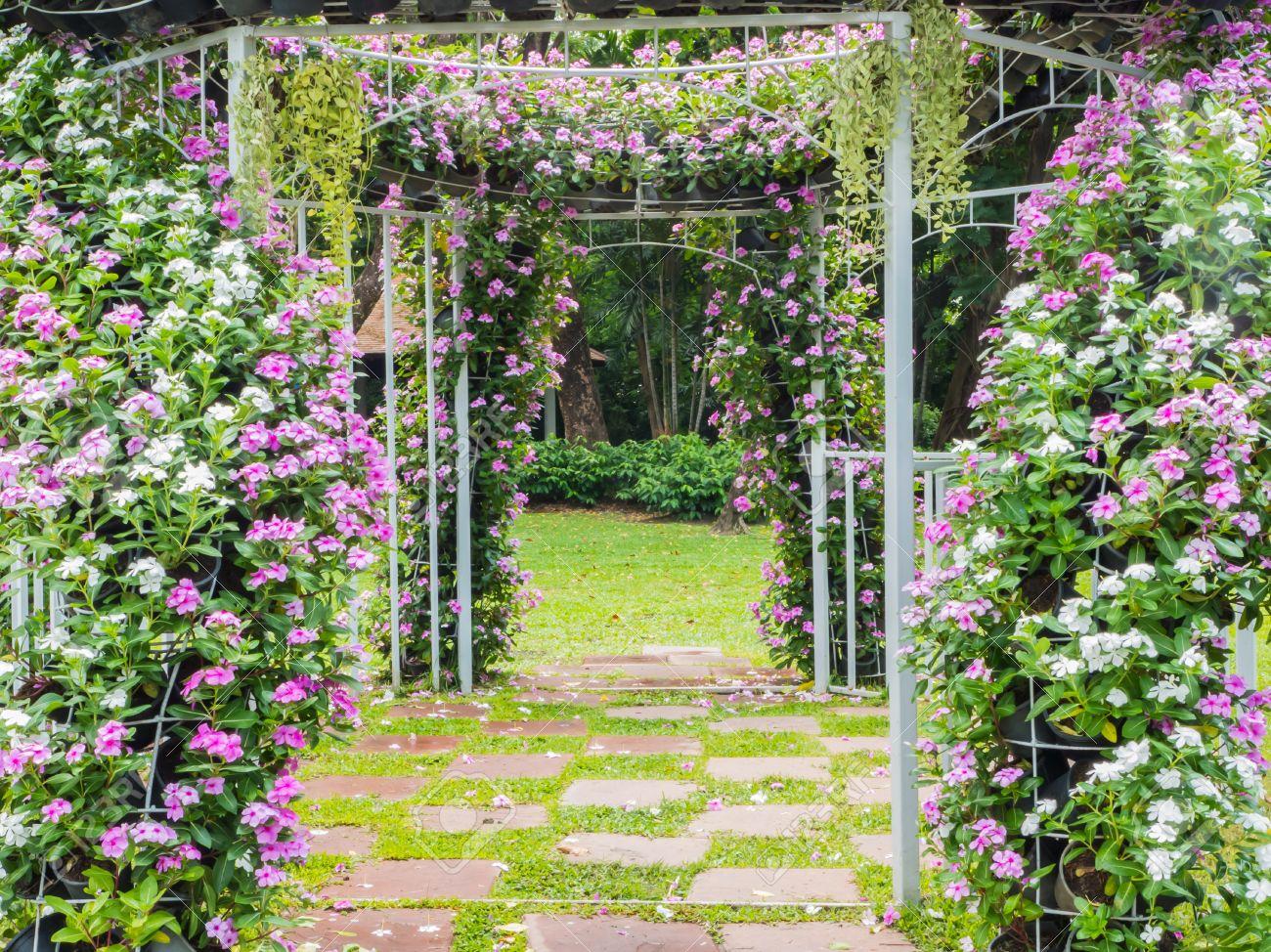 Blooming Arco De Flores Con Sendero En El Jardn De Fondo De La Boda