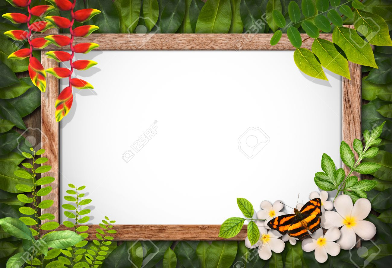 Nature Border With Flower And Green Leaf Background Stock Photo ...