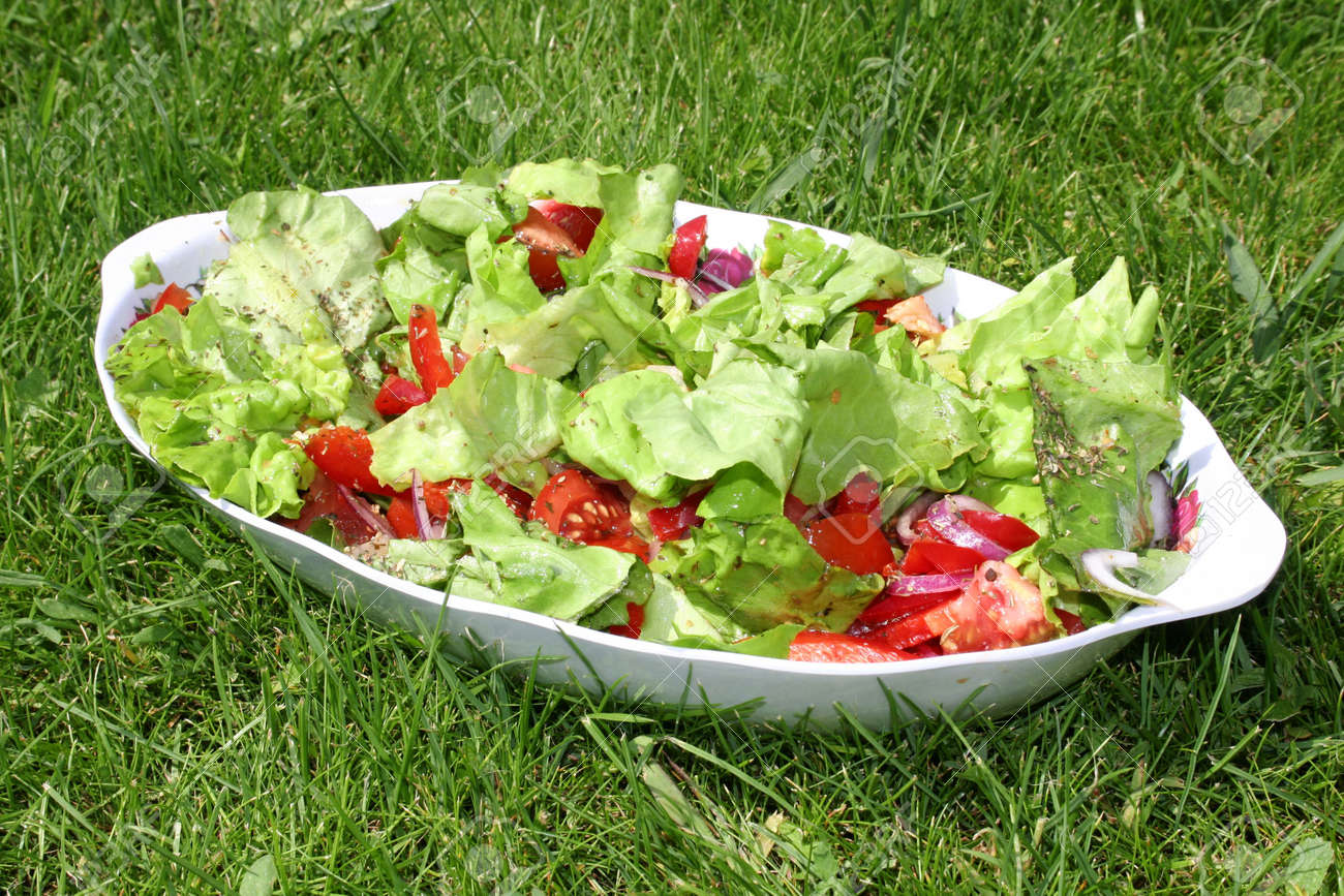 Tossed green salad, with tomatoes on green grass Stock Photo - 3128248